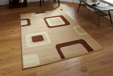 at home or office rug cleaning throughout perth